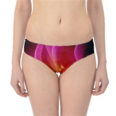 Awesome F?owers With Glowing Lines Hipster Bikini Bottoms