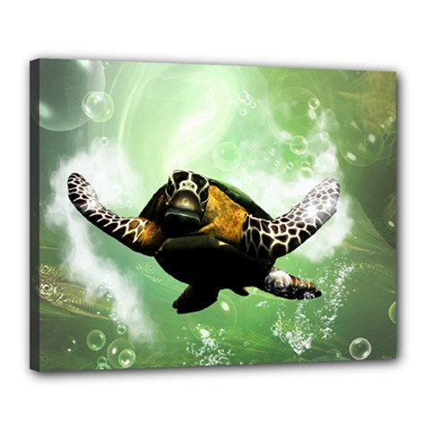 Beautiful Seaturtle With Bubbles Canvas 20  x 16