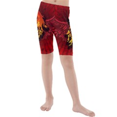 Lion With Flame And Wings In Yellow And Red Kid s swimwear