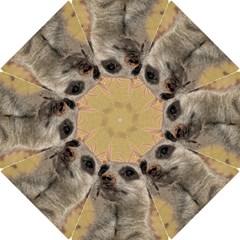 Meerkat 2 Hook Handle Umbrellas (large)