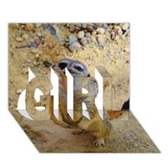 Lovely Meerkat 515p Girl 3d Greeting Card (7x5)
