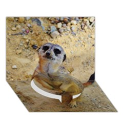 Lovely Meerkat 515p Circle Bottom 3d Greeting Card (7x5)
