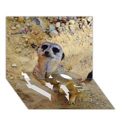 Lovely Meerkat 515p LOVE Bottom 3D Greeting Card (7x5)