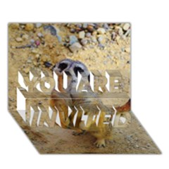 Lovely Meerkat 515p YOU ARE INVITED 3D Greeting Card (7x5)