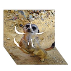 Lovely Meerkat 515p Clover 3d Greeting Card (7x5)