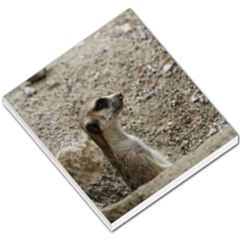 Adorable Meerkat Small Memo Pads