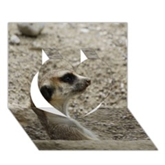 Adorable Meerkat Heart 3D Greeting Card (7x5)