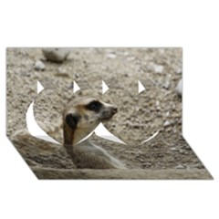 Adorable Meerkat Twin Hearts 3D Greeting Card (8x4)