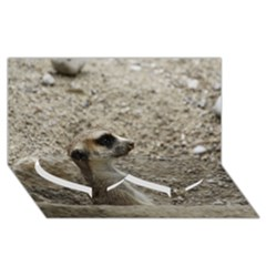 Adorable Meerkat Twin Heart Bottom 3d Greeting Card (8x4)