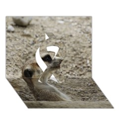 Adorable Meerkat Ribbon 3D Greeting Card (7x5)