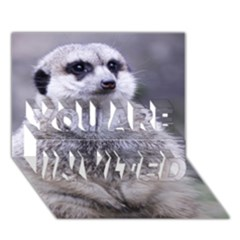 Adorable Meerkat 03 YOU ARE INVITED 3D Greeting Card (7x5)