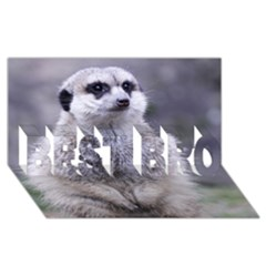 Adorable Meerkat 03 BEST BRO 3D Greeting Card (8x4)