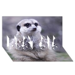 Adorable Meerkat 03 Best Sis 3d Greeting Card (8x4)