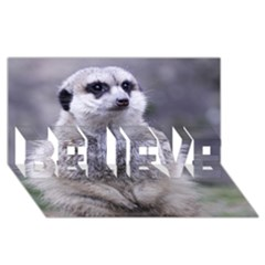 Adorable Meerkat 03 BELIEVE 3D Greeting Card (8x4)