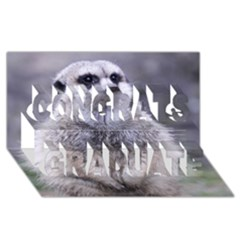 Adorable Meerkat 03 Congrats Graduate 3d Greeting Card (8x4)