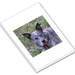 Australian Cattle Dog Blue Large Memo Pads