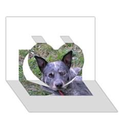 Australian Cattle Dog Blue Heart 3D Greeting Card (7x5)