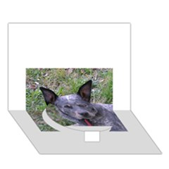 Australian Cattle Dog Blue Circle Bottom 3D Greeting Card (7x5)