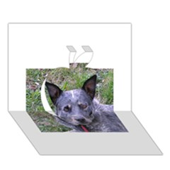 Australian Cattle Dog Blue Apple 3D Greeting Card (7x5)