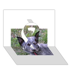 Australian Cattle Dog Blue Ribbon 3D Greeting Card (7x5)