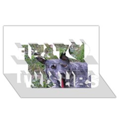 Australian Cattle Dog Blue Best Wish 3D Greeting Card (8x4)