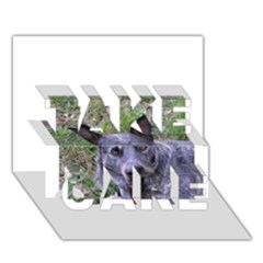 Australian Cattle Dog Blue TAKE CARE 3D Greeting Card (7x5)