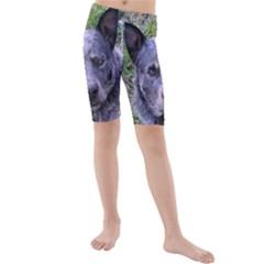 Australian Cattle Dog Blue Kid s swimwear