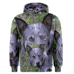 Australian Cattle Dog Blue Men s Pullover Hoodies