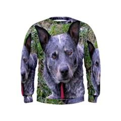 Australian Cattle Dog Blue Boys  Sweatshirts