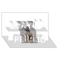 Malinois Puppy Sitting Best Friends 3D Greeting Card (8x4)