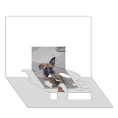 Malinois Puppy Sitting LOVE Bottom 3D Greeting Card (7x5)