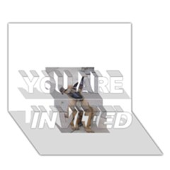 Malinois Puppy Sitting YOU ARE INVITED 3D Greeting Card (7x5)