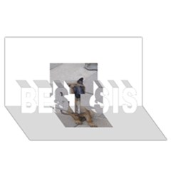 Malinois Puppy Sitting BEST SIS 3D Greeting Card (8x4)