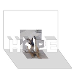 Malinois Puppy Sitting Hope 3d Greeting Card (7x5)
