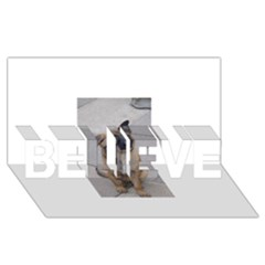 Malinois Puppy Sitting BELIEVE 3D Greeting Card (8x4)