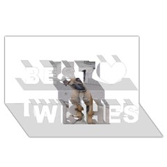 Malinois Puppy Sitting Best Wish 3D Greeting Card (8x4)