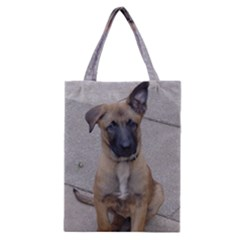 Malinois Puppy Sitting Classic Tote Bags