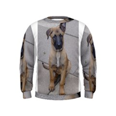 Malinois Puppy Sitting Boys  Sweatshirts