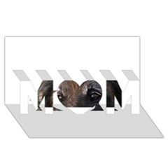 Belgian Tervueren Eyes MOM 3D Greeting Card (8x4)