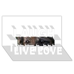 Belgian Tervueren Eyes Laugh Live Love 3D Greeting Card (8x4)