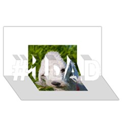 Bedlington Terrier #1 DAD 3D Greeting Card (8x4)