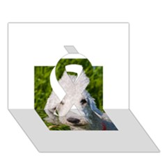 Bedlington Terrier Ribbon 3D Greeting Card (7x5)