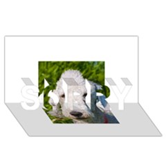 Bedlington Terrier SORRY 3D Greeting Card (8x4)
