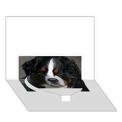 Bernese Mountain Dog Heart Bottom 3D Greeting Card (7x5)