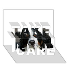 Bernese Mountain Dog TAKE CARE 3D Greeting Card (7x5)
