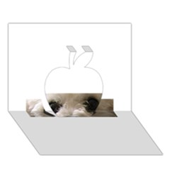 Bolognese Eyes Apple 3D Greeting Card (7x5)