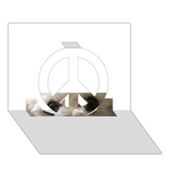 Bolognese Eyes Peace Sign 3d Greeting Card (7x5)