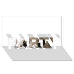 Bolognese Eyes PARTY 3D Greeting Card (8x4)