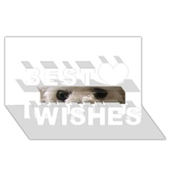Bolognese Eyes Best Wish 3D Greeting Card (8x4)