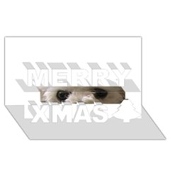 Bolognese Eyes Merry Xmas 3D Greeting Card (8x4)